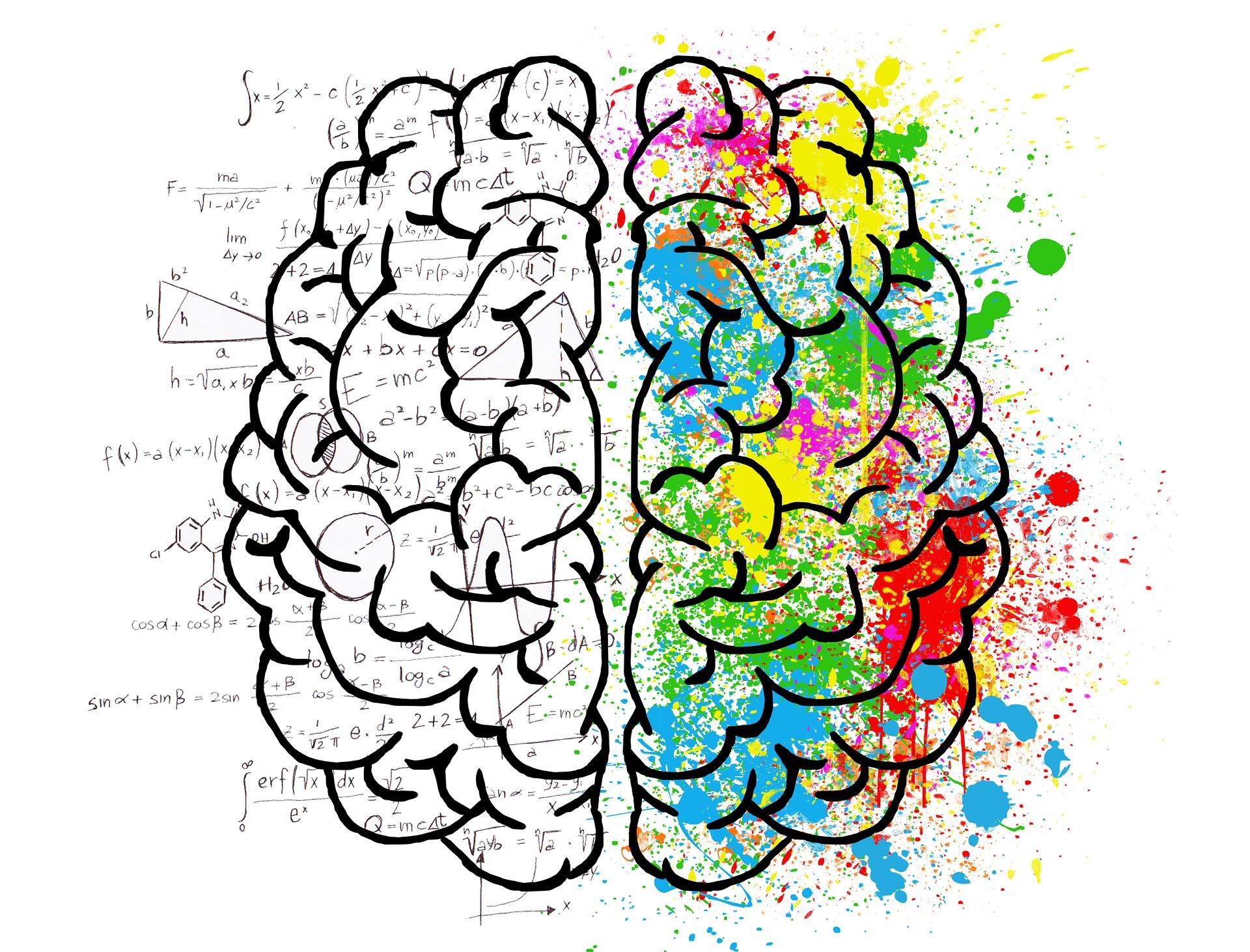 Lerntipp 7: Gehirnpflege ist die Voraussetzung für Konzentration